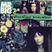 Mr. Big - Green Tinted Sixties Mind