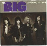 Mr. Big - Addicted To That Rush