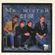 Mr. Mister - Is It Love