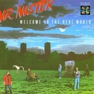 Mr.Mister - Welcome to the Real World