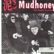 Mudhoney / Gas Huffer - You Stupid Asshole / Knife Manual