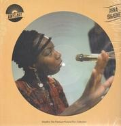 Nina Simone - Vinylart: The Premium Picture Disc Collection
