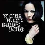 Niobe - Blackbird's Echo