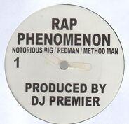 Notorious B.I.G. / Redman / Method Man b/w The Lox - Rap Phenomenon b/w Recognize