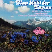 Orchester Thomas Berger - Blau Blüht Der Enzian - 28 Hits Zum Tanzen Und Mitsingen