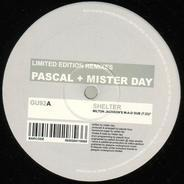 Pascal + Mister Day - Shelter (Remixes)