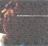 Peter Hemmill - The Complete Concert