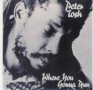 Peter Tosh - Where You Gonna Run / Stop That Train
