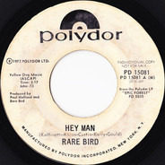 Rare Bird - Hey Man
