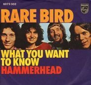 Rare Bird - What You Want To Know / Hammerhead