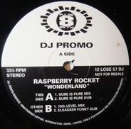 Raspberry Rocket - Wonderland