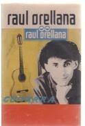 Raúl Orellana - Guitarra