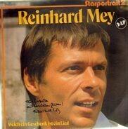 Reinhard Mey - Welch Ein Geschenk Ist Ein Lied - Starportrait 2