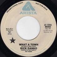 Rick Danko - What A Town