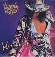 Rick James - Wonderful