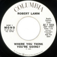 Robert Lamm - Where You Think You're Going?