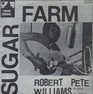 Robert Pete Williams - Sugar Farm
