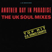 S.L. Line - Another Day In Paradise (The UK Soul Mixes)