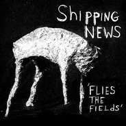 The SHIPPING NEWS - Flies the Fields