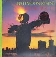 Sonic Youth - Bad Moon Rising