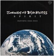 Sounds Of Blackness - spirit