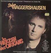 Stefan Waggershausen - Im Herzen des Orkans