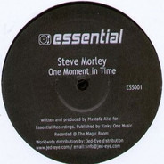 Steve Morley - One Moment In Time