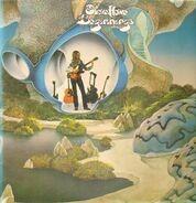 Steve Howe - Beginnings