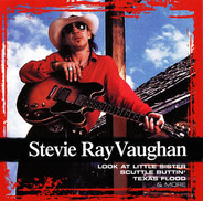 Stevie Ray Vaughan - Collections