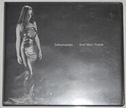 Subterraneans - Soul Mass Transit