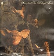 Sunnyland Slim - Midnight Jump