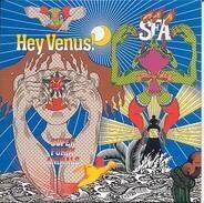 Super furry animals - Hey venus