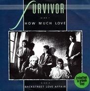 Survivor - How much love