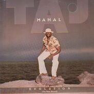 Taj Mahal - Evolution ( The Most Recent)