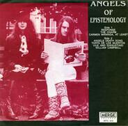 The Angels Of Epistemology - Response