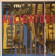 The Balham Alligators - Life In The Bus Lane