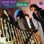 The Barracudas - DROP OUT WITH THE BARRACUDAS