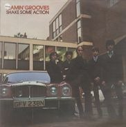 The Flamin' Groovies - SHAKE SOME ACTION