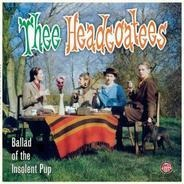 The HEADCOATEES - Ballad of the Insolent Pup