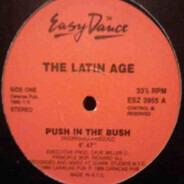 The Latin Age - Push In The Bush