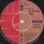 The Marmalade - (Your Wish Is In) The Wishing Well