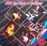 The Michael Schenker Group - One Night at Budokan