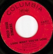 The Pozo-Seco Singers - Look What You've Done