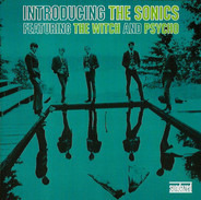 The Sonics - Introducing the Sonics