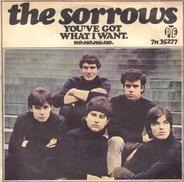 The Sorrows - You've Got What I Want