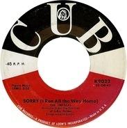 The Impalas - Sorry (I Ran All The Way Home) / Fool, Fool, Fool