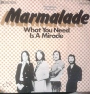 The Marmalade - What You Need Is A Miracle