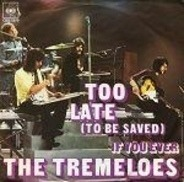 The Tremeloes - Too Late (To Be Saved)