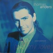 Thomas Anders - Can't Give You Anything (But My Love)