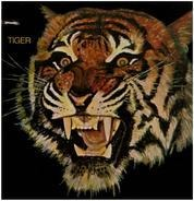 Tiger - same